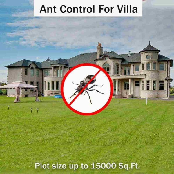 Ant Control Villa Plot Size Up To 15000 Sq. Ft.