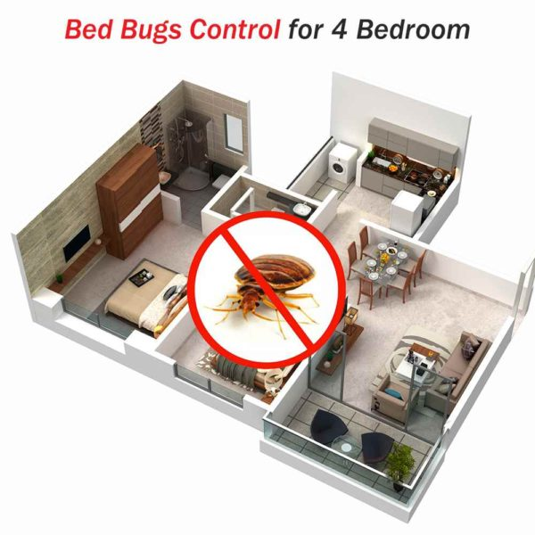 Bed Bugs Control For 4 Bedroom