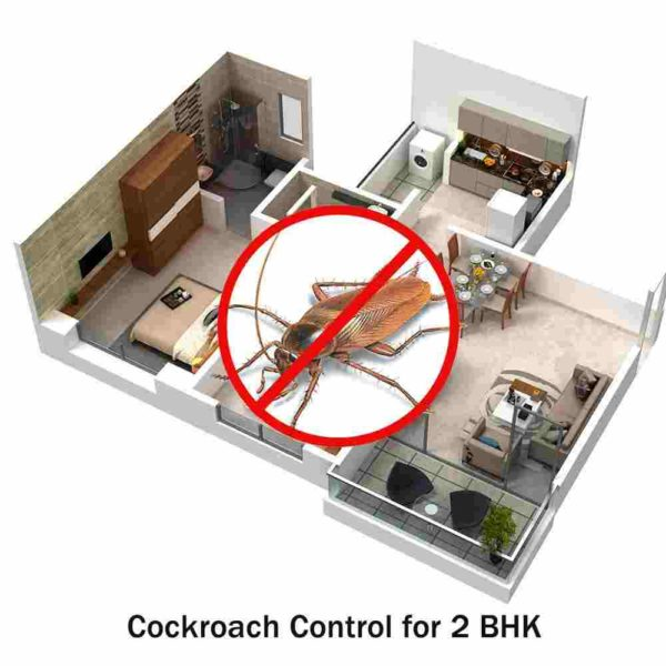 Cockroach Control Service for 2 BHK
