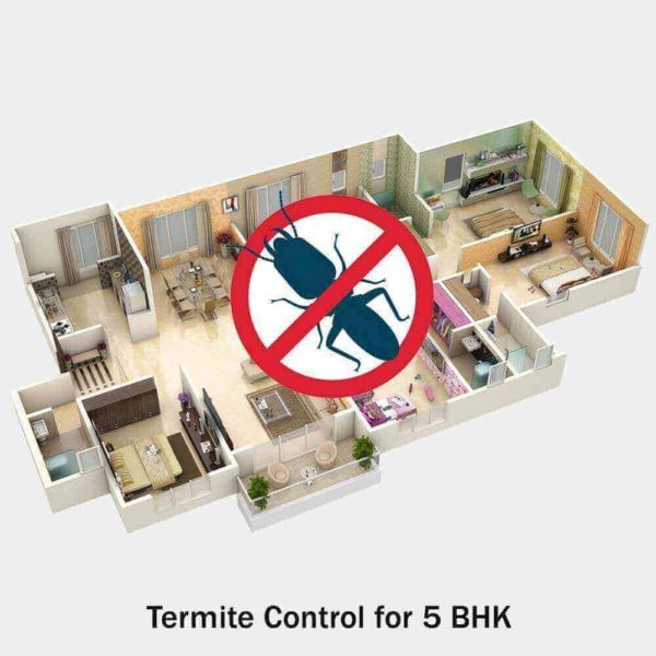 Termite Control for 5 BHK