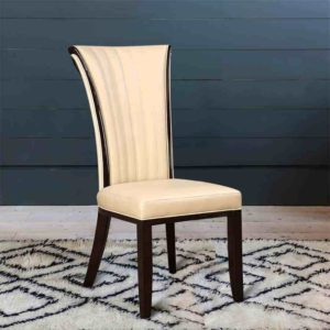 Dining Chair Shampooing