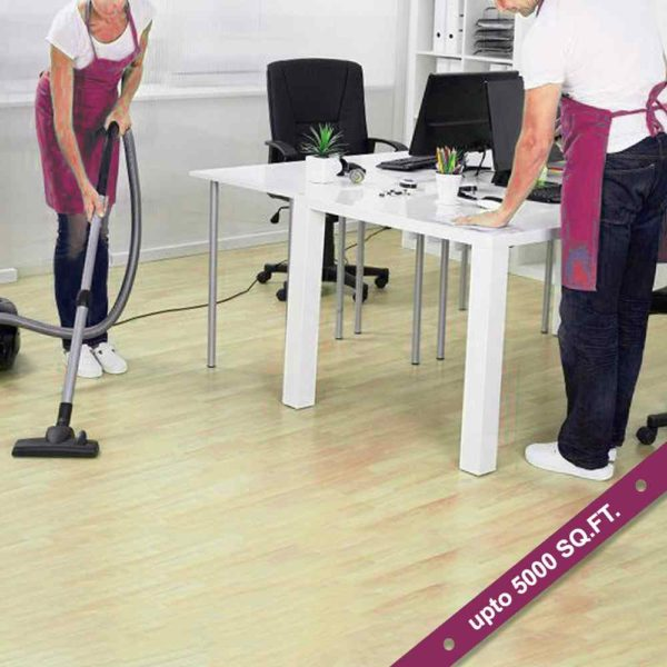 Commercial Janitorial Services
