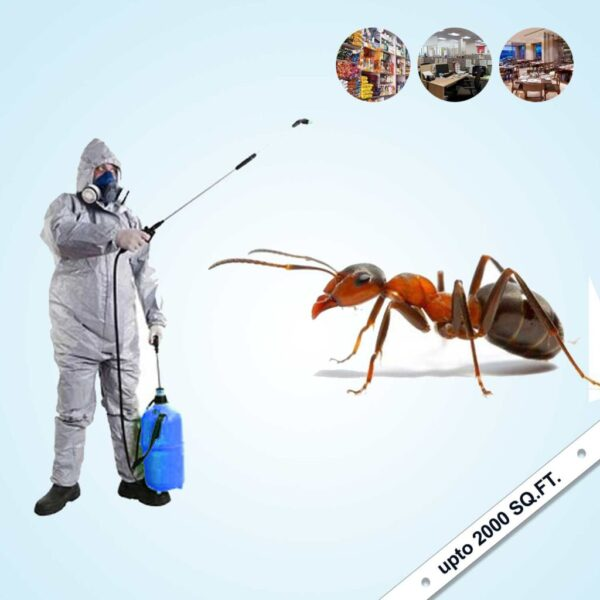 Ant Control Service For (Shops, Offices, Restaurant ) Upto 2000 Sq.Ft