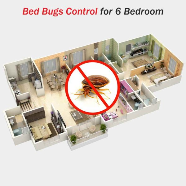Bed Bugs Control Spray For 6 Bedroom