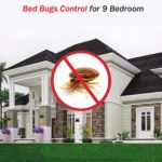 Bed Bugs Control For 9 Bedroom Now At Hygienedunia.