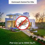 Cockroach Control For Villa At Hygieneduina