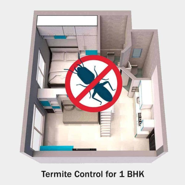 Commercial Termite ControlFor 1 Bhk