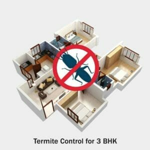Termite Control for 3 BHK
