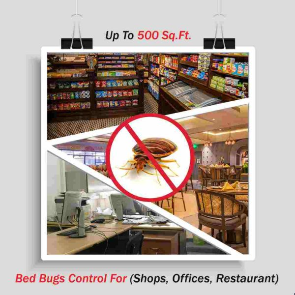 Bed Bugs Control (Shops, Offices, Restaurant ) Up To 500 Sq. Ft.