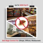 Bed Bugs Control For Shops Offices Restaurant Up To 5000 Sq. Ft.