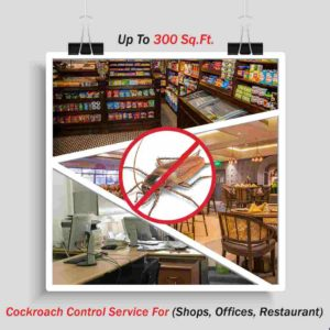 Cockroach Control forOffices | Shops | Restaurant | up to 300 sq. ft. area
