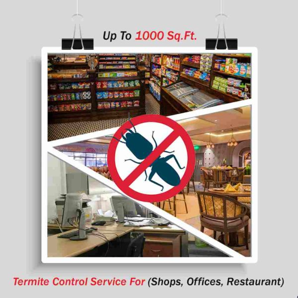 Termite Control (Shops, Offices, Restaurant ) up to 1000 Sq. Ft.