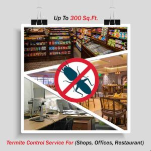 Termite Control (Shops, Offices, Restaurant ) up to 300 Sq. Ft.