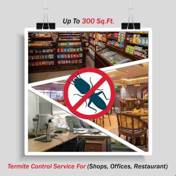 Termite Control Services Up To 300 Sq. Ft.