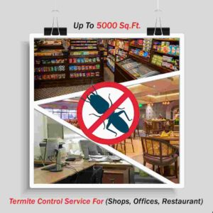 Termite Control (Shops, Offices, Restaurant ) up to 5000 Sq. Ft.
