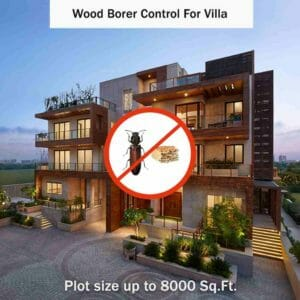Wood Borer Control Service in Villas by our No.1 Experts