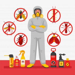 Pest Control Services by Hygienedunia