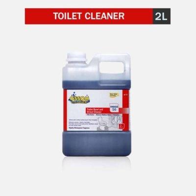 toilet cleaner acid