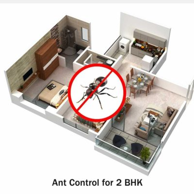 Ant Control Service for 2 BHK