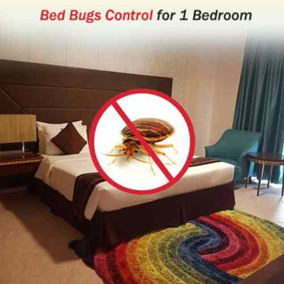 Bed Bugs Control Services for 1 Bedroom