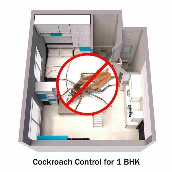 Cockroach Control Service for 1 BHK