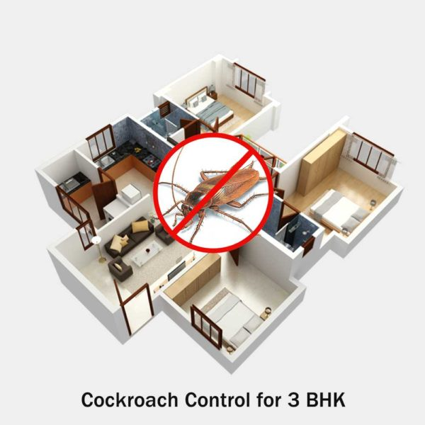 Cockroach Control for 3 BHK