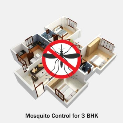 Mosquito Control Services for 3 BHK