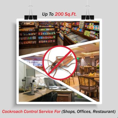 Cockroach Control for Shops