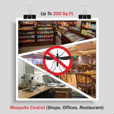 Mosquito Control for Offices