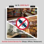 Termite Control Up To 1000 Sq. Ft.