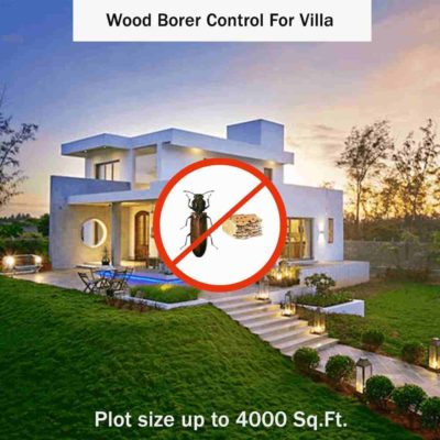 Wood Borer Control for Villa Plot size up to 4000 sq. ft.