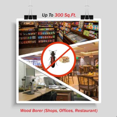 Wood Borer Pest Control for Offices | Get 40% OFF | Book Today |